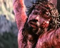 Ježíšova slova na kříži (video)