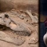 1 Stvořitelský den (24 hodin) nebo miliardu let? (Video)